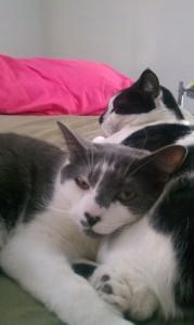 Lenny & Squiggy